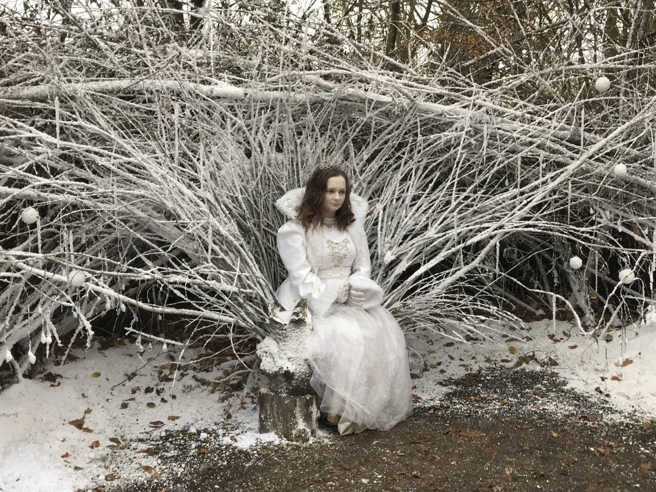 The Snow Queen An Elf's Wish at Nevendon Manor