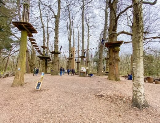 Tree top adventure Go ape leeds castle