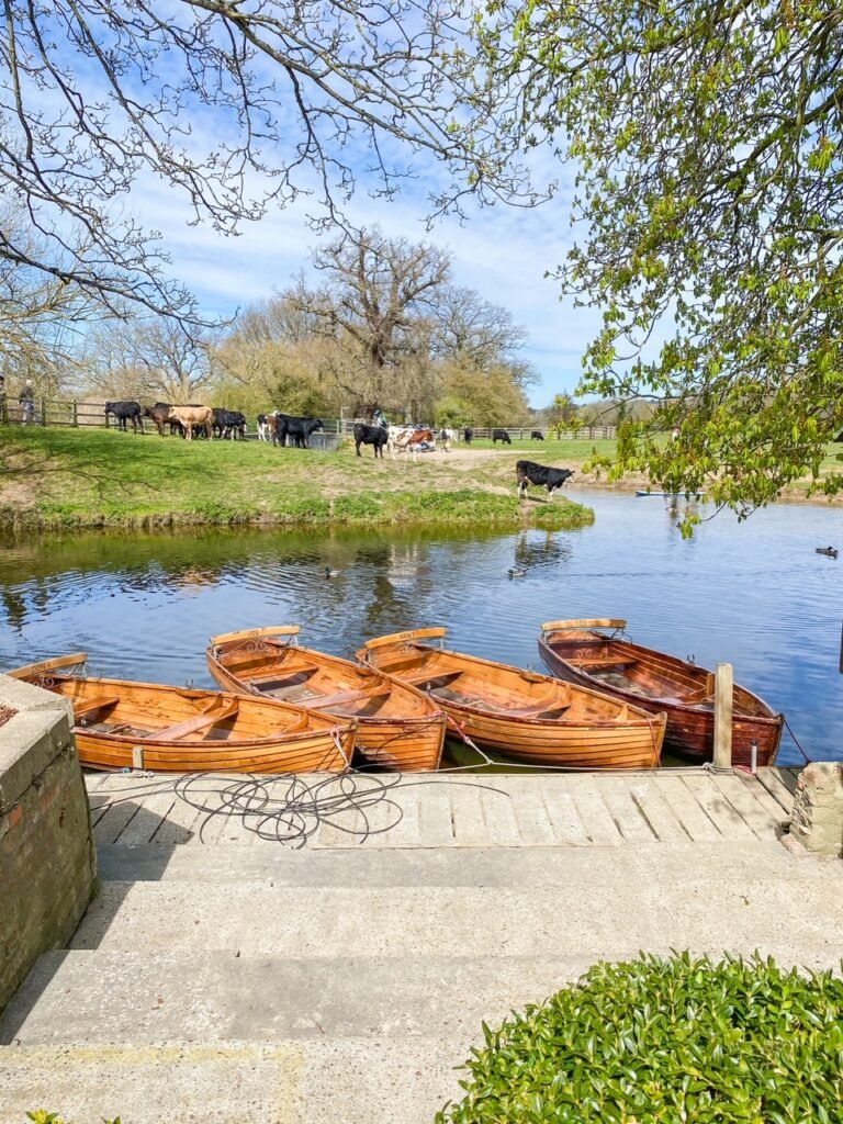 Dedham Boathouse Boat Hire in Essex. View of rowing boats on the River Stour.